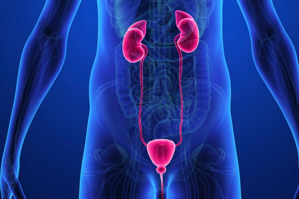 Preeches a Prostatitis Vélemények A fűszint a prosztatitis kezelése